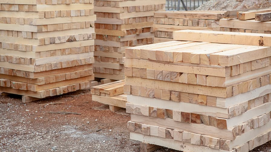 The timber is used for renovations of monasteries in whole Bulgaria